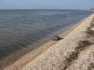 Black sea expedition 2010_31