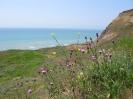 Black sea expedition 2010_35