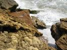 Black sea expedition 2010_51