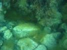 Black sea expedition 2010_95