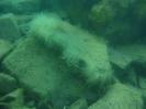 Black sea expedition 2010_97